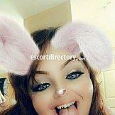 Escort Bunny