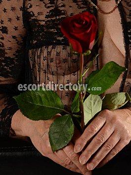 Escort Rose