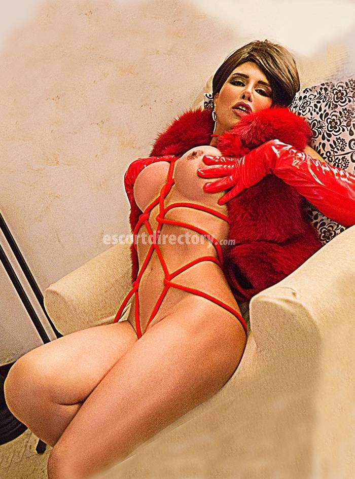 escort italiane a bologna milan gay massage