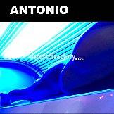 Escort Antonio