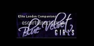 Agency Blue Velvet Girls