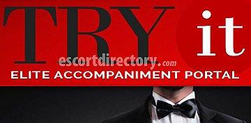 Agency TRY IT Elite Accompaniment Portal